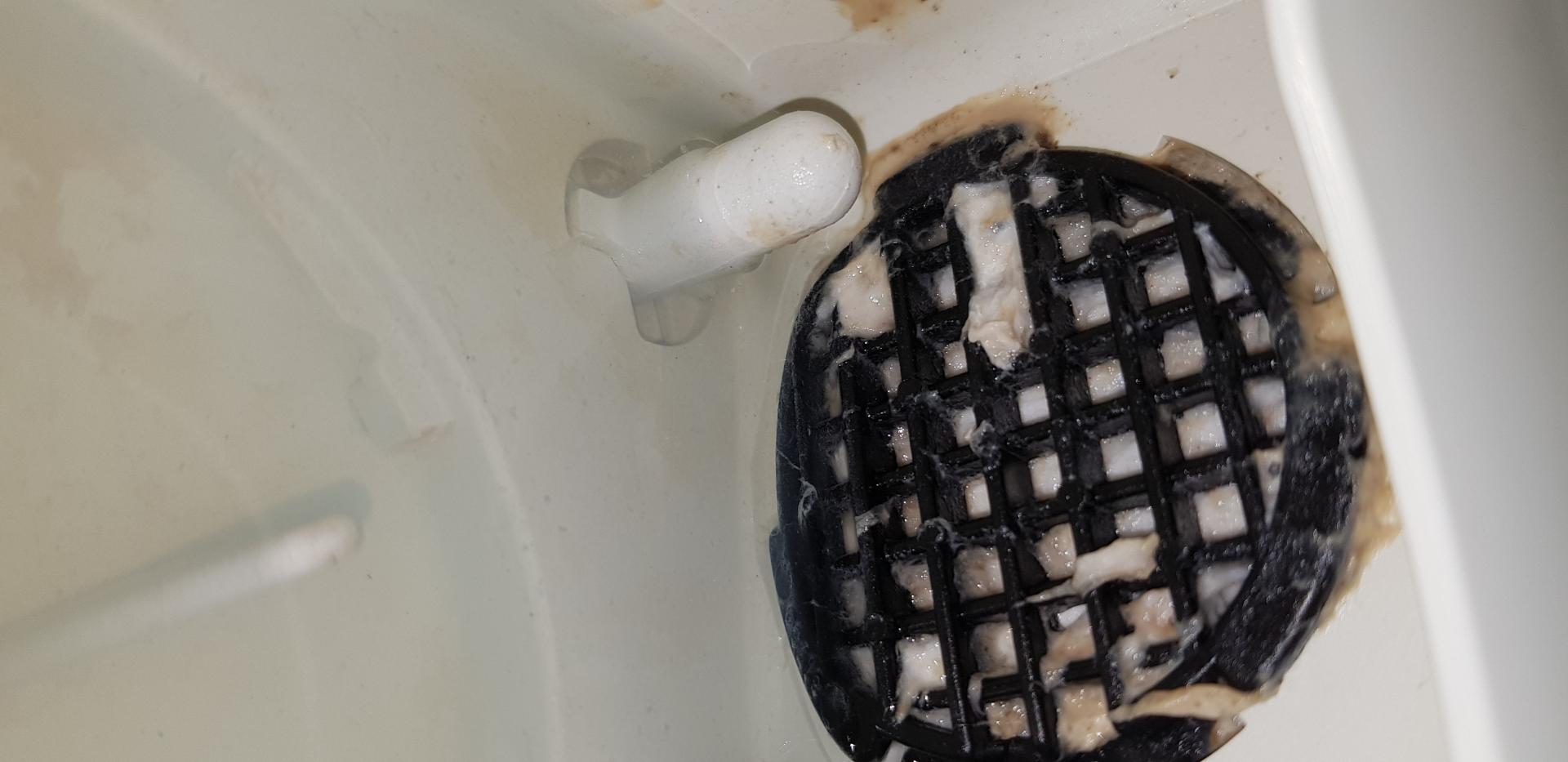 Lave vaisselle encrasse pb entretien